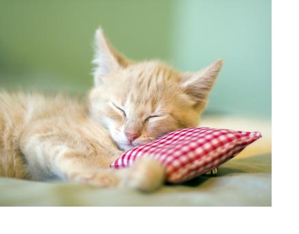 طرق مريحة لليلة نوم هادئة