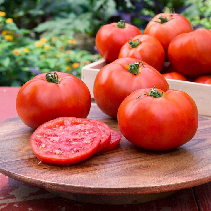 هل جذور الطماطم سامة؟