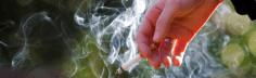التبغ سبب رئيسي للوفاة والاعتلال والفقر