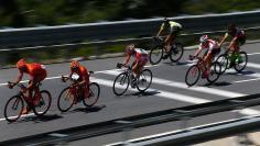 ألمانيا. ركوب الدراجات يحمى الخلايا العصبية للدماغ من التلف