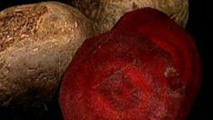 خضر وفواكه تحميك من نزلات البرد في الشتاء