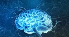 كيف يمكن الحفاظ على صحة الدماغ؟