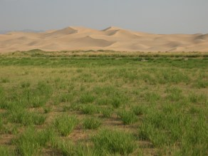 """""""These sand dunes stretch across 100km (62mi) and are up to 20km (12.4mi) wide. Some of them reach heights of 800m (.5mi),"""" Ammon told us before slipping his guide book back into his baggy, cut-off shorts."""