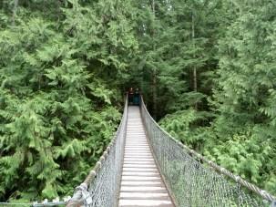 Lynn Canyon suspension bridge. North Vancouver, BC