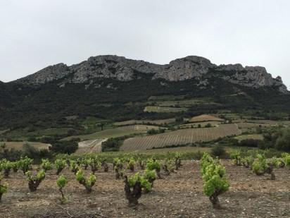 countryside Near Carcassonne, France