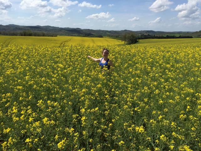 Mustard Fields