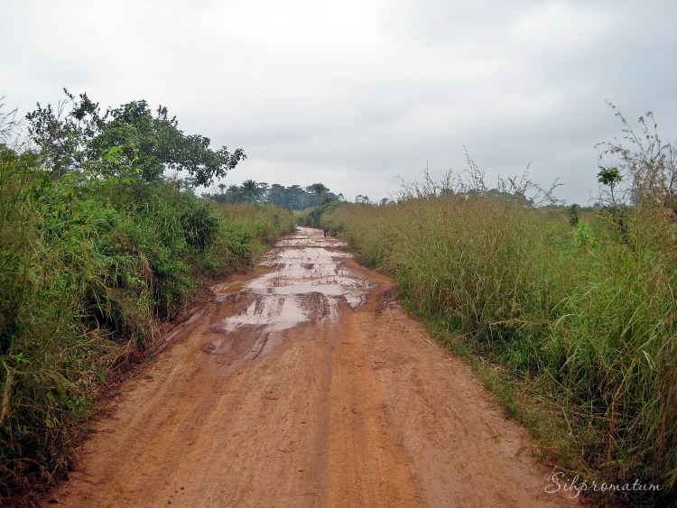 A large portion of the roads weren't paved throughout DRC