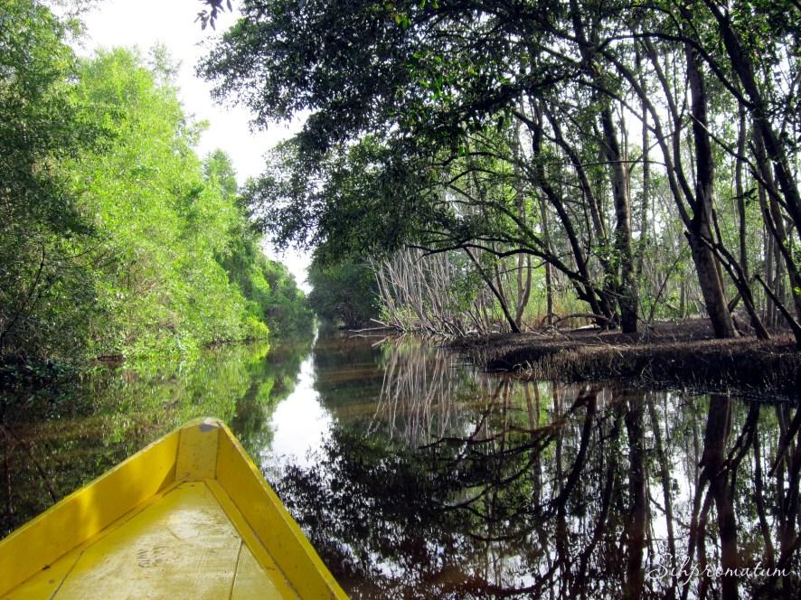 canoeing Suriname