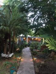 Lush entrance to Bananas Restaurant