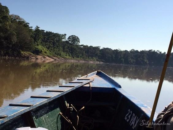 canoeing down the Amazon