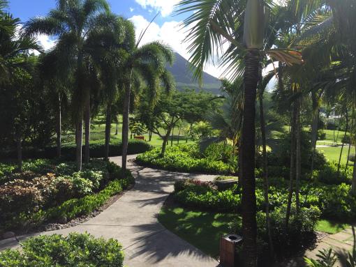 tropical-paradise-on-nevis - Copy - Copy