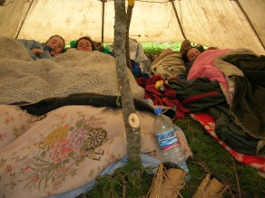 ...or how our Chinese cowboy guides went into the woods to cut down trees to build our tents and fashioned beds out of evergreen boughs....