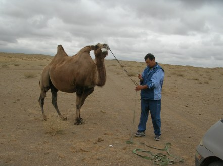 """Yeah, I catch camel,"" Future said. ""No way,"" I said. ""I is professional. I know it camels,"" he said. ""This fuming camel was about to become our personal tow truck."