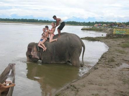 Bathing with the elephants