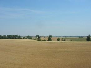 Peaceful countryside