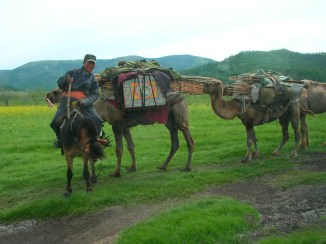"""Can you imagine being able to pack your whole house onto the backs of a few camels?"""" Mom reminded us about seeing a nomadic family in travel mode a few hours before. They had been transporting their ger on a couple of camels loaded with the orangey-red support poles and the ger's felt cover."""