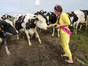 Savannah Grace with cows