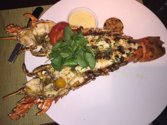 Delicious Nevisian Spiny Lobster at Coral Grill