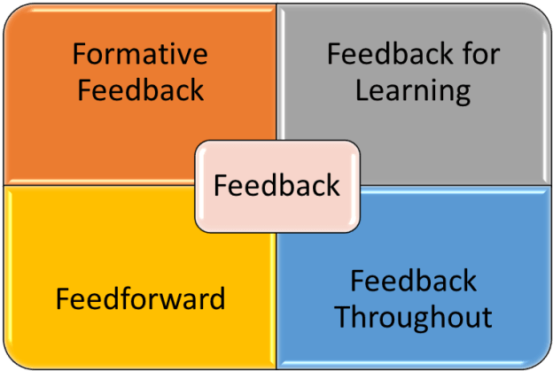 Four types of feedback