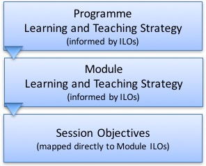 Diagram showing stargeies and objectives at programme, module and session levels