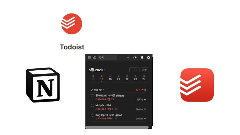 notion, todoist