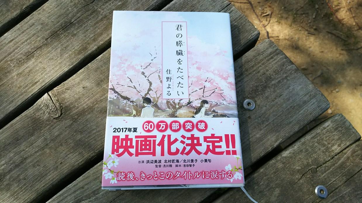 小説「君の膵臓をたべたい」