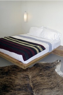 thunderbird-hotel-bedroom-with-animal
