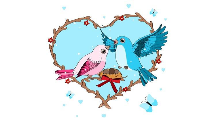 Заговор при кормлении птиц на любовь