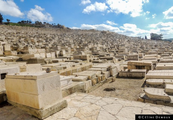 Israel-old-Jerusalem-Silencio-mont-oliviers-02