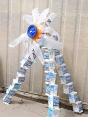 Students used milk cartons to decorate their garden,