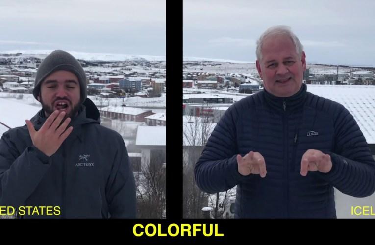 Icelandic Sign Language in 49 Words!