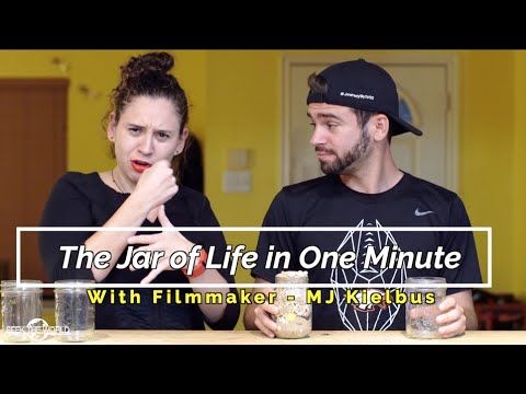The Jar of Life in One Minute