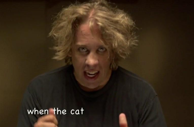 Keith Wann – Cat Cameo
