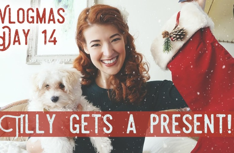 Vlogmas Day 14: Present For Tilly!