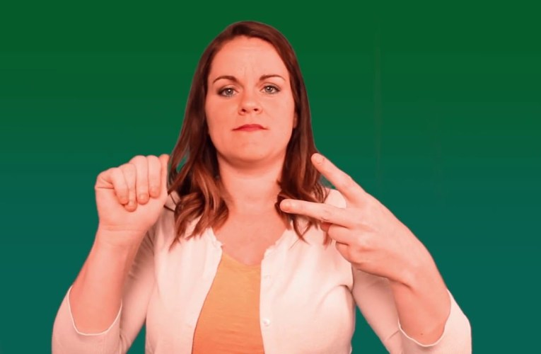 Effective Teaming with Deaf Interpreters Training