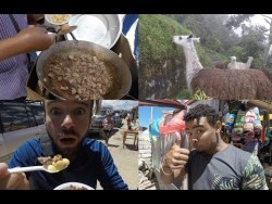 Bolivia's Llama meat: A Traditional Part of Andean Indigenous Cuisine