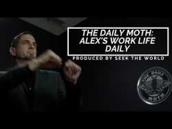 The Daily Moth: Alex Abenchuchan's Work Life Daily