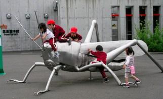 these kids had a blast cricket-climbing...