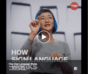 How Sign Language Works Image