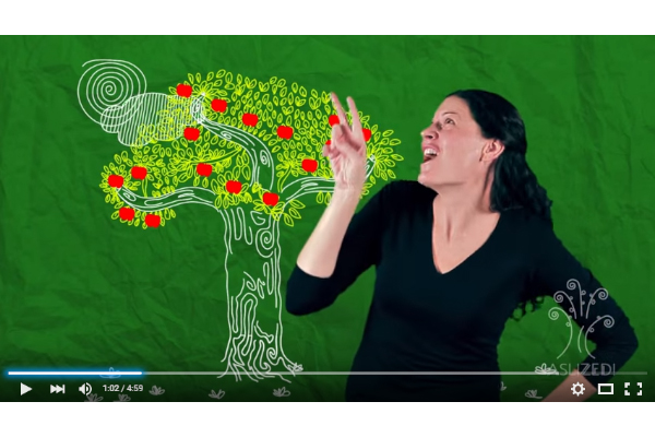 Adult in black shit in front of a green screen with a tree in it