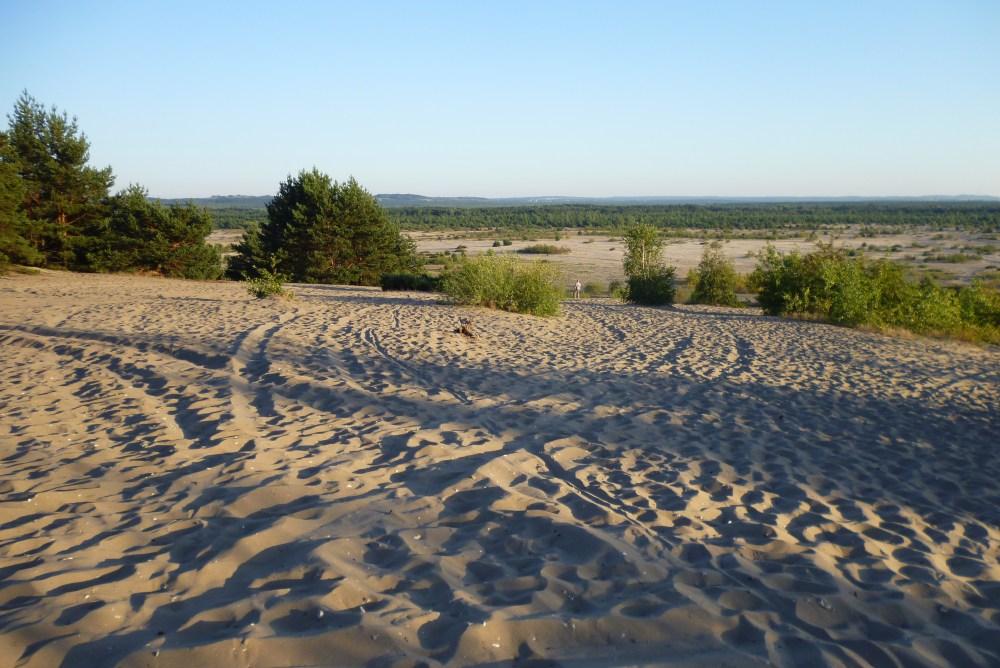 Desert in Poland?! Yes, it is! Polish Sahara - Pustynia Błędowska (2/4)