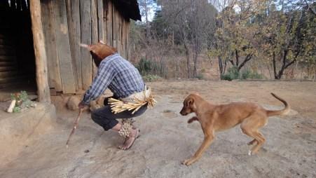 Mexico Tarahumara Dance