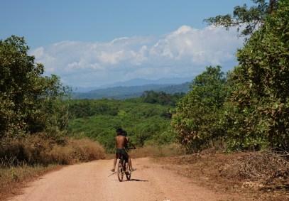 Ratanakiris forest disapears fast