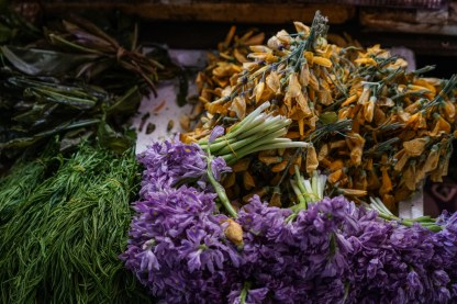 Flowers from the forest - highlander specialties
