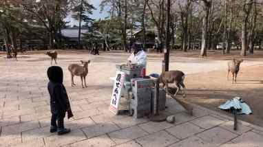 AA-0222_Japan 2017 small - Kopie