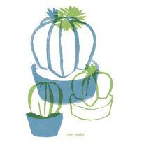 Bischofsmütze Weil der kleine Kaktus keine Stacheln hat ist er sehr beliebt. Er ist auch sonst sehr liebevoll, denn eine Tinktur aus den Blättern regt Gehirn und die Durchblutung der Sexualorgane an. 2 Mal täglich 1 TL und es erhöhen sich Libido und die Samenproduktion.