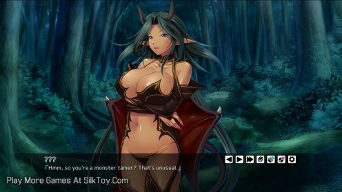 Master of the Harem Guild wet pussy hentai sex game_14