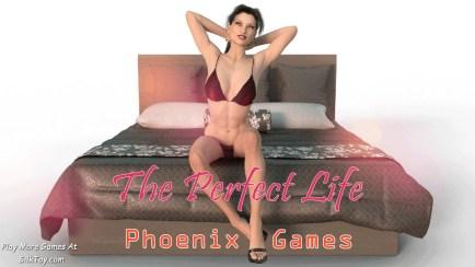 perfect_life_3d_sex_game (7)