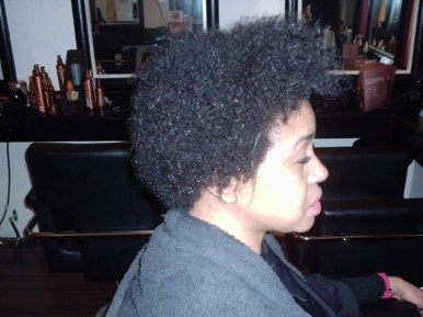 Brazilian Blow Out - Natural Afro Hair (Before Side View)