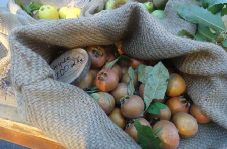 Fiera dei frutti dimenticati di Casola Valsenio
